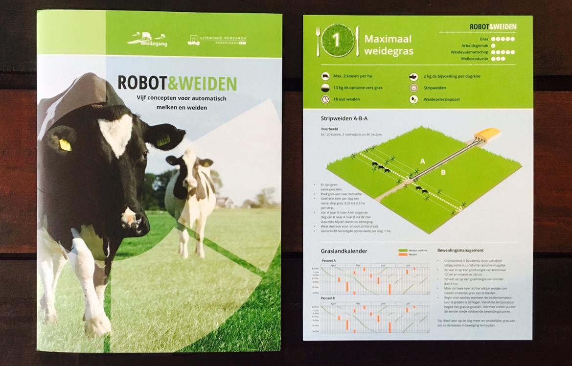 Robot&Weiden